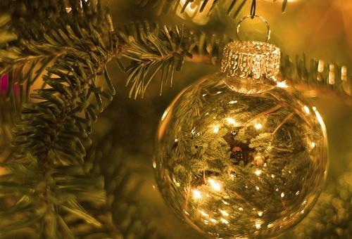 Joy - Why Christmas Needs to be True