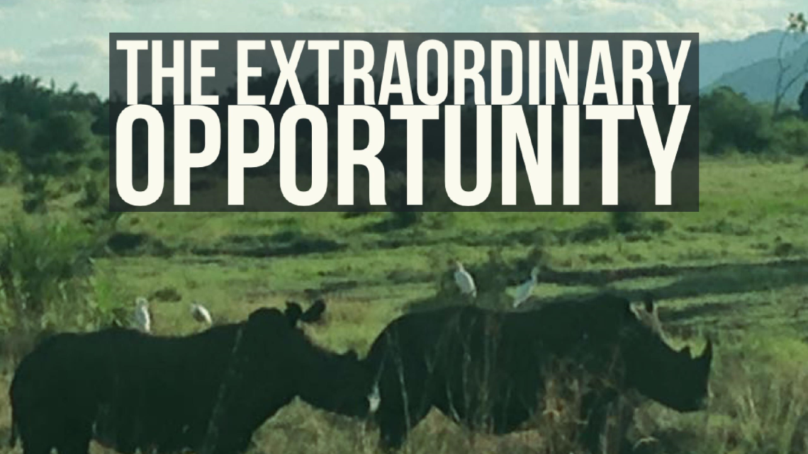 The Extraordinary Opportunity
